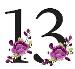 پکیج شماره 13 فیلمبرداری و عکاسی عروسی سال 97